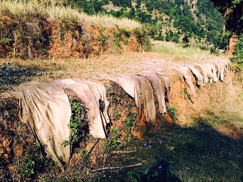 weavers-nepal-4-2